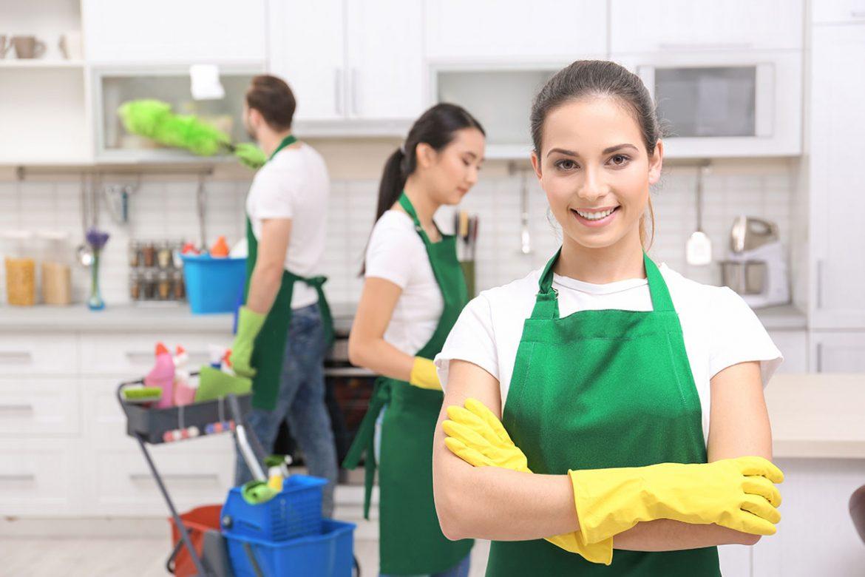 profesyonel-temizlik